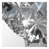 "Sterling Zilveren Oorstekers met Swarovski Zirconia ""Crystal""_"